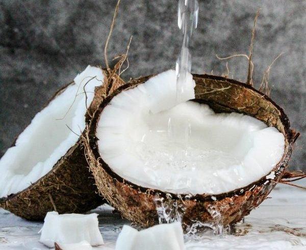 Kokosová palma a jej využitie