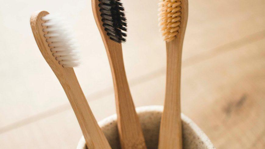 BAMBUS – Prečo si kúpiť výrobky z bambusu?